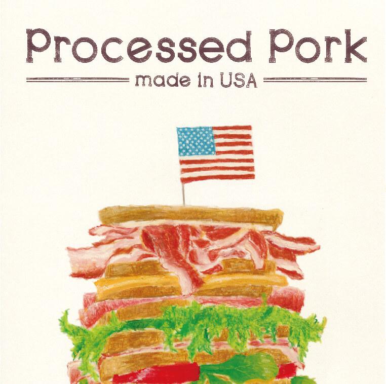 パンフレット 米国食肉輸出連合会 2013年