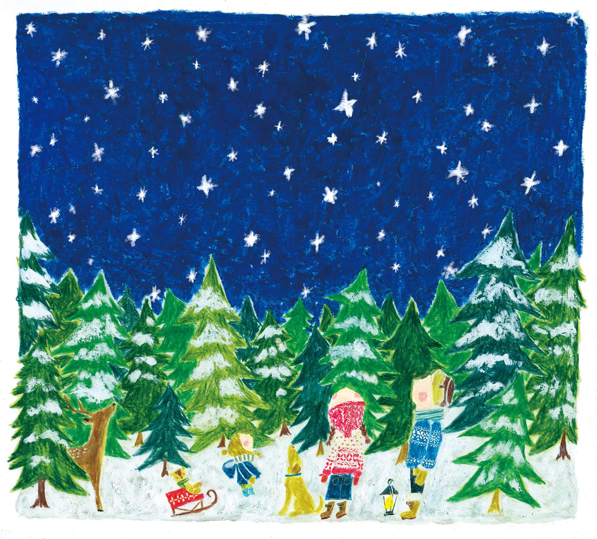 「すこやか健保」表紙絵 健保連 2014年「冬のきれいな夜空」
